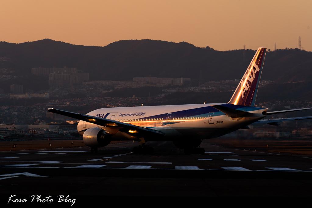 DSC_7177.jpg