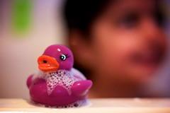 Purple rubber duck