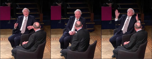 Attenborough at the RI (triptych)