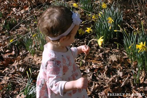 Spring Songs & Fingerplays
