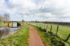 Taunton canal