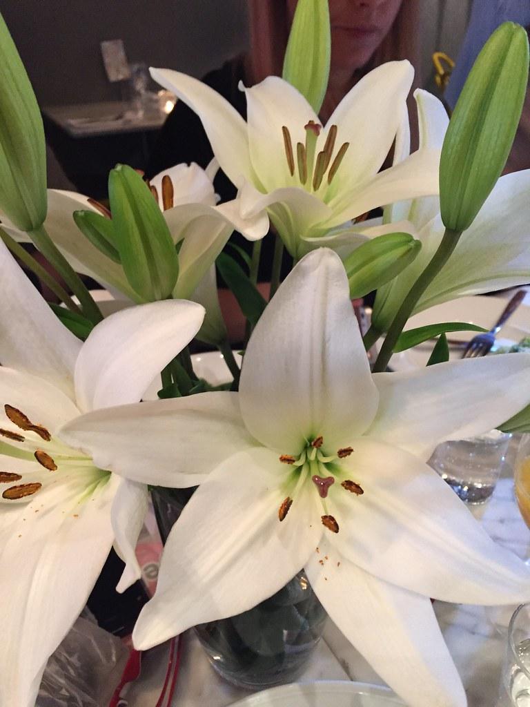 Fina vita blommor - brunch