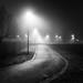 fog by Valerio Gallo aka ValerioG