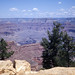 Grand Canyon National Park - Arizona  1984 by bigjohn1941