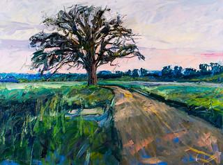 McBaine Bur Oak - Sunset - Brian Mahieu - 40x30
