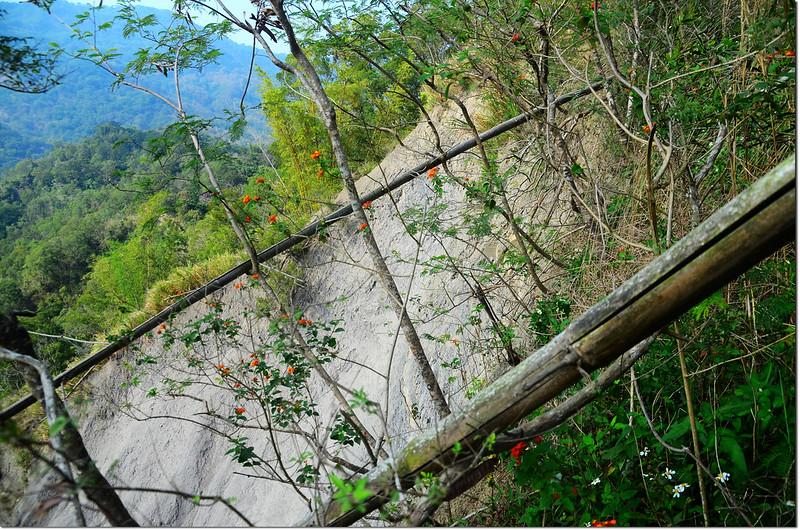 茄苳湖山山頂坍方處