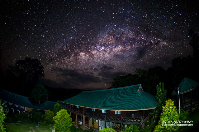 Maliau Basin Milkyway - DSC_0224