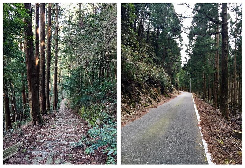 kumano nachi trail