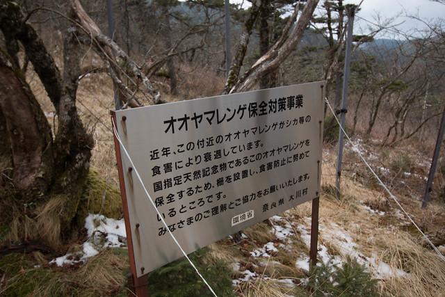 20141123-大峰山-0389.jpg