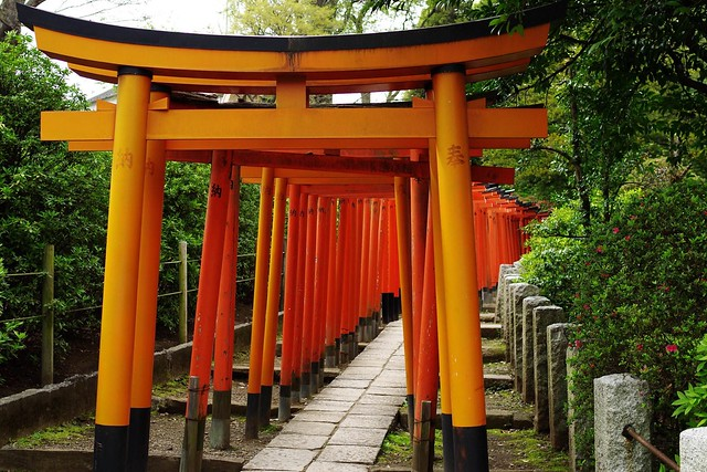 2016/04/09根津神社つつじ祭り-7