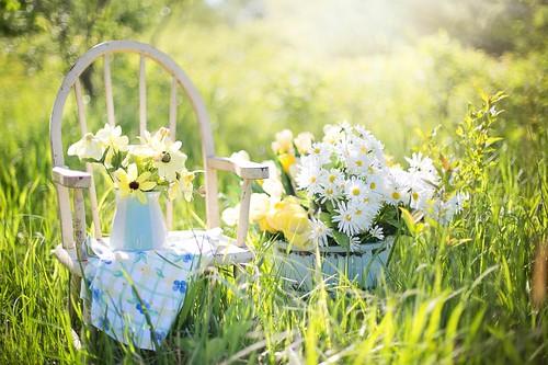 Serene Flowers