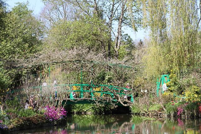vegetation and bridge