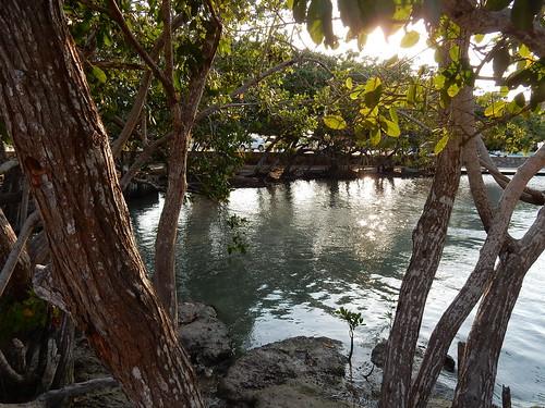 Rio Lagartos - Balneario El Chiquila