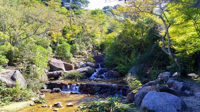 Momijidani Park Stream