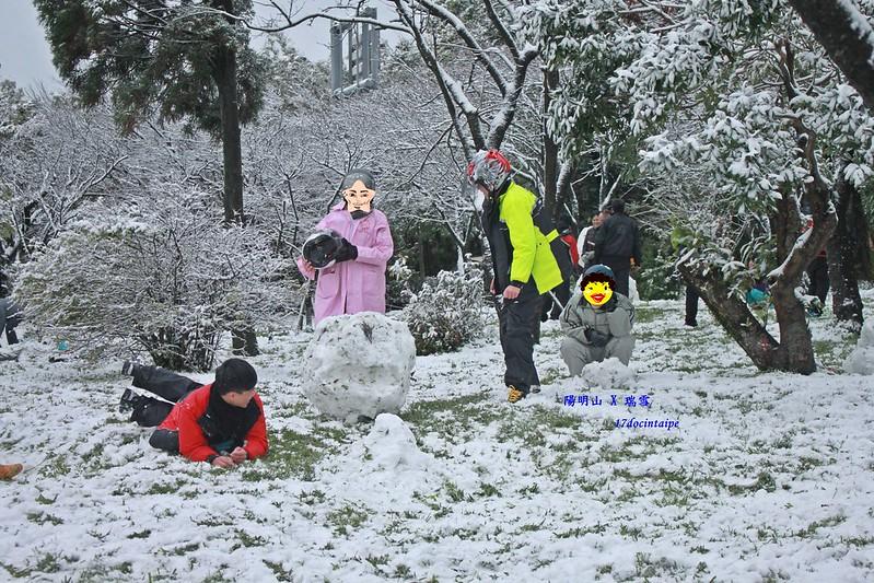 2016-台北陽明山-瑞雪-難得一見的雪白山景-17度C隨拍 (94)