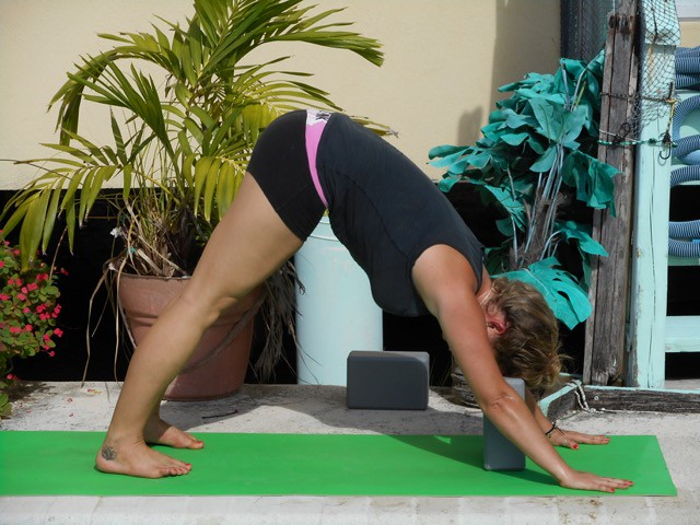 Downward Facing Dog Pose Heels Down