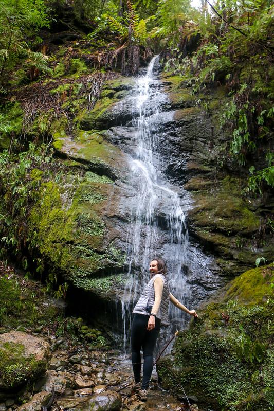 01.24. Forest of Nisene Marks: Maple Falls