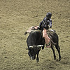 02468832-73-2015 National Finals Rodeo NFR-Bull Riding-10 by Jim There's things half in shadow and in light