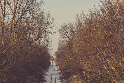 railroad trees winter snow up rural us unitedstates traintracks rail railway iowa unionpacific lacey traintrack bnsf iais unionpacificrailroad g29 bnsfrailway iowainterstaterailroad newsharon mahaskacounty countyhighwayg29