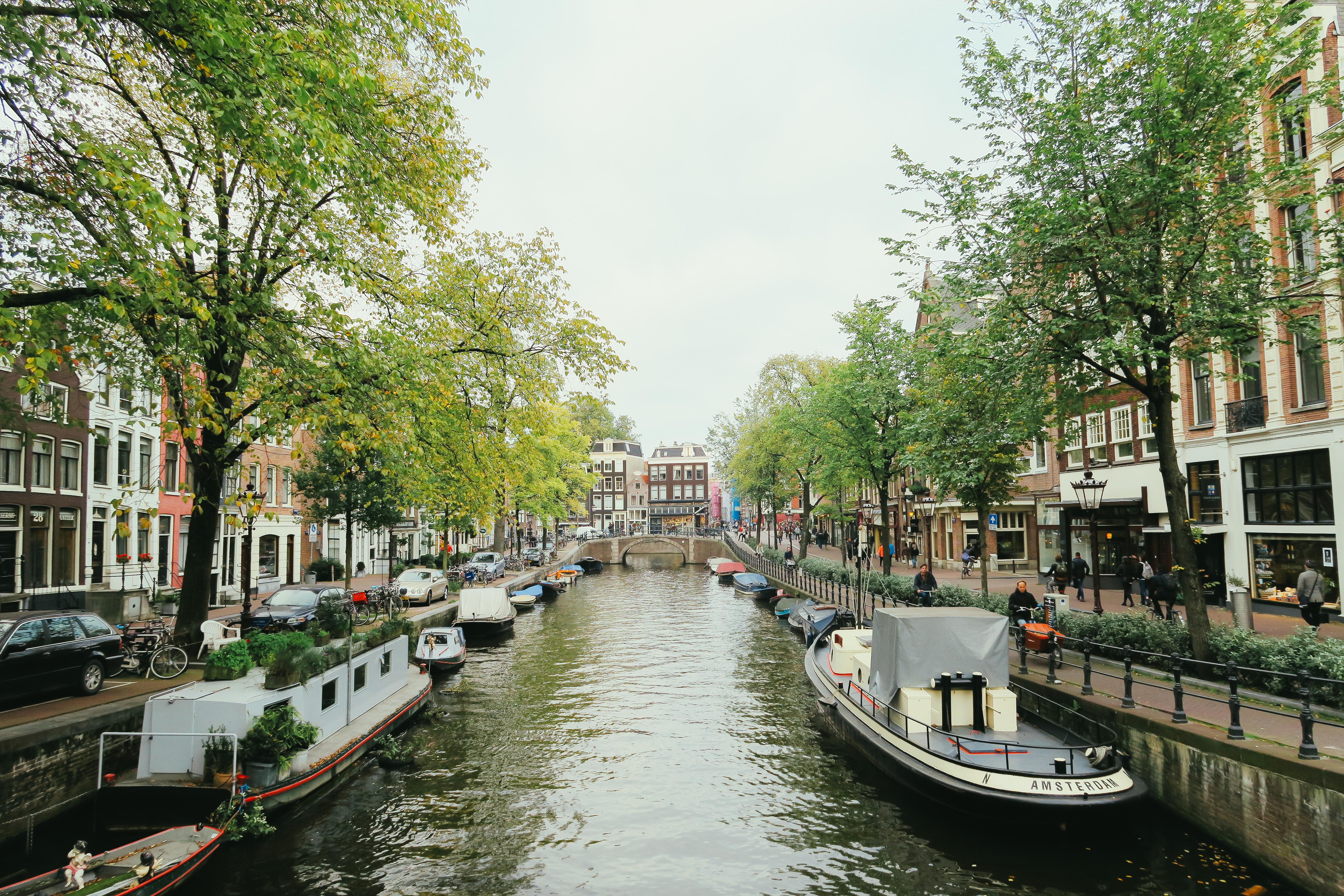 Amsterdam 2015 (4 of 62)