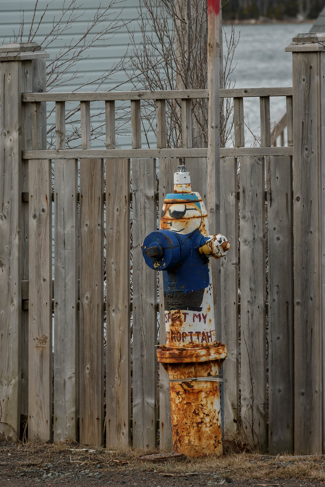 hydrant badly in need of a paint job