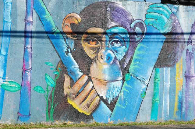 Street Mural in Villarica, Chile