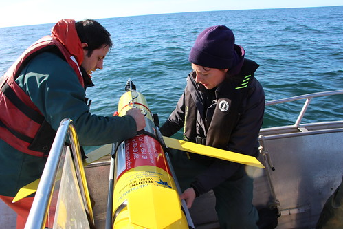 WHaLE ocean glider readied for deployment