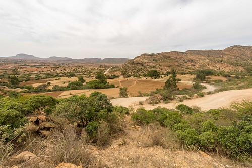 climate variability impacts on land use and livelihoods in drylands