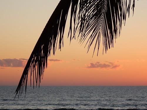 Celestino Gasco - sunset