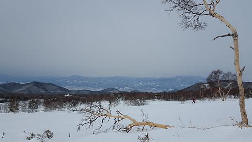 16-01-23-10-34-09-468_photo