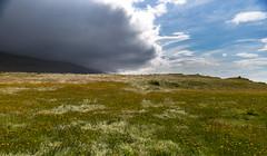 Upcoming Storm