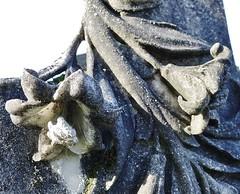 Ageing marble lillies cling to a kirkstone in Banchory Ternana kirkyard
