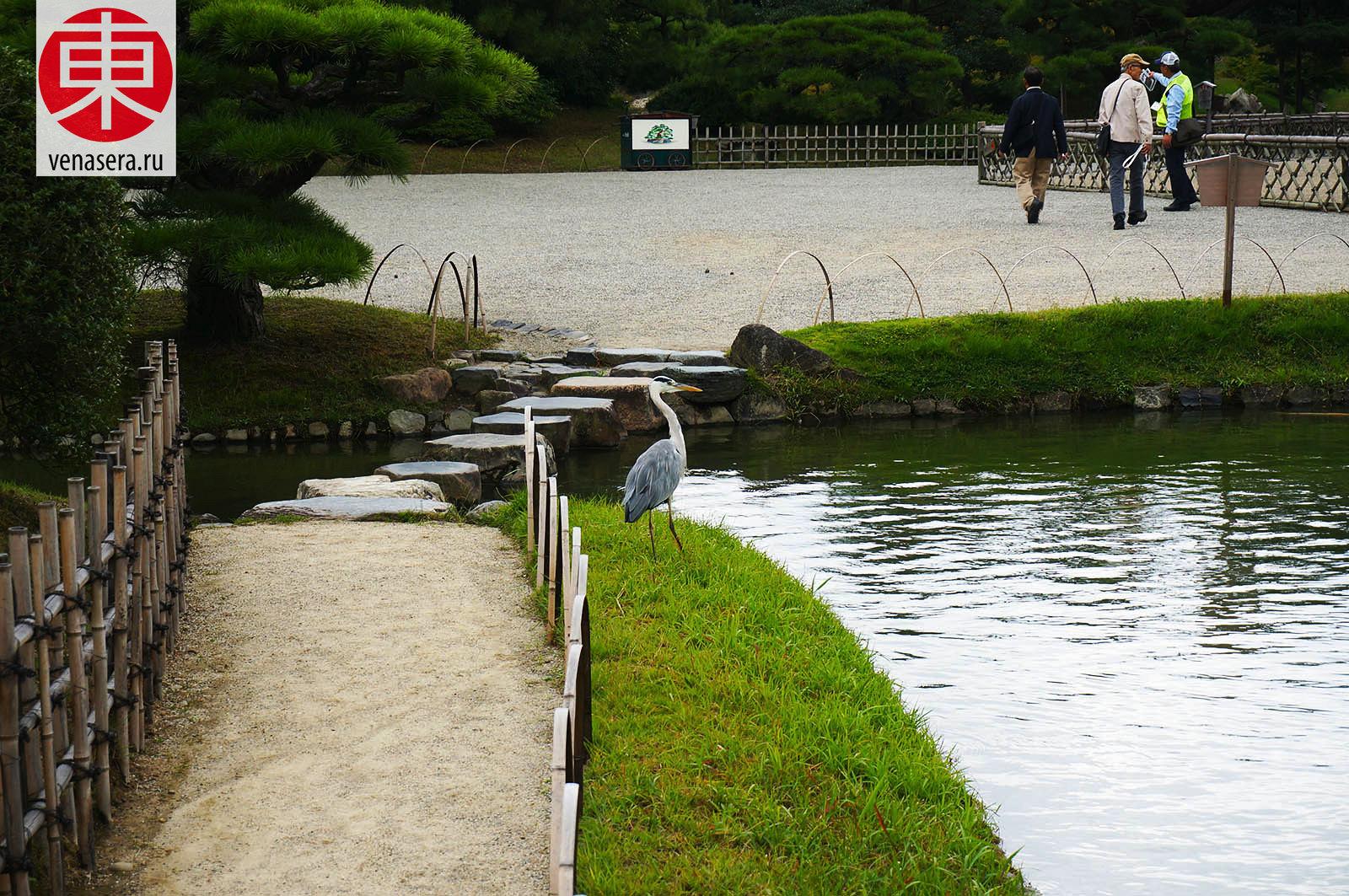 Рицурин Коэн, Ritsurin Koen, 栗林公園, Такамацу, Takamatsu, 高松, Сикоку, Shikoku, 四国, Япония, Japan, 日本.