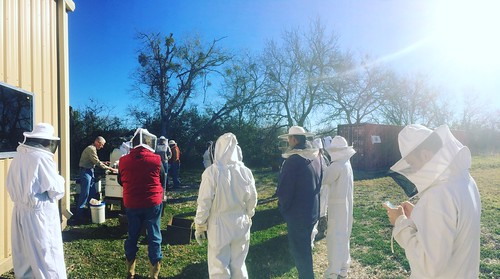 Spring 2016 activities at the Bee Ranch