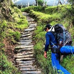 Camino de ascenso al parque Binacional el Tamá. Esta belleza natural está compartida por los estados #táchira y #apure en #Venezuela y por el departamento de #nortedesantander en #Colombia.  #travel #turismo #turism #igworldclub #picoftheday #elnacionalwe