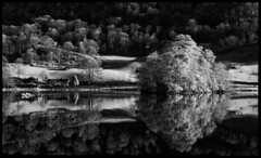 Rydal Water Infrared