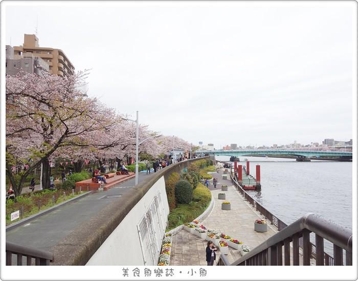 【日本東京】隅田公園賞櫻/晴空塔 @魚樂分享誌