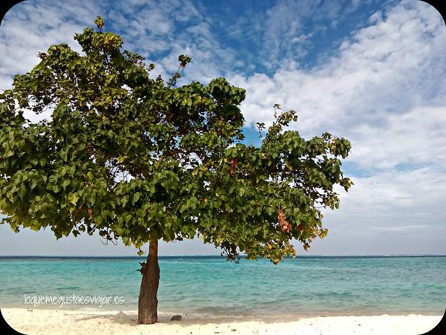 Maldivas18