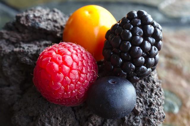 berries on lava rock