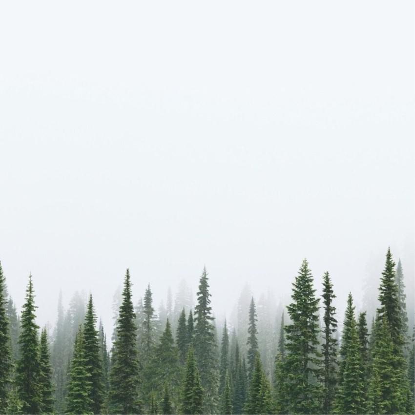 минималистични снимки