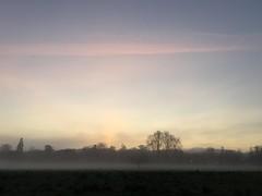 05.02.16 • aube...l'avantage quand tu pars bosser tôt (avec un accent circonflexe !), est que tu vois la nature dans toute sa splendeur. Je me régale de ces matins froids et brumeux qui présagent un beau soleil. #jaimemacampagnebordelaise