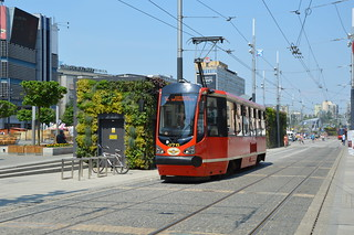 Tramwaje i Autobusy - Trams and Buses