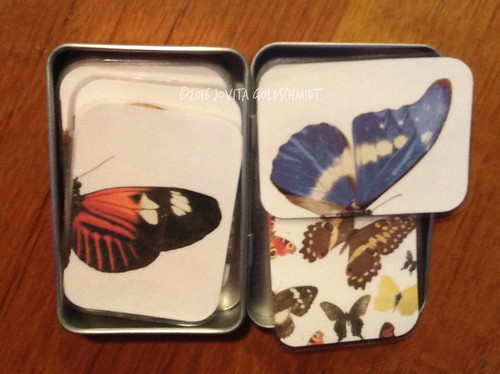 butterflies in tin
