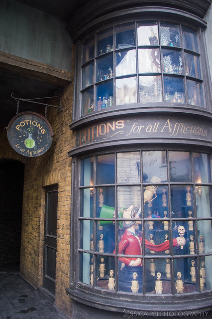 Harry Potter World Potions Shop