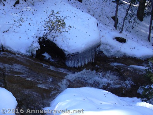 Gotta love all those icicles! Near Horsethief Falls, Pike National Forest near Divide, Colorado