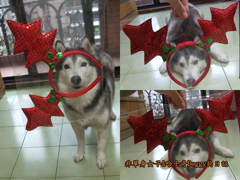 Doggy聖誕節紅色聖誕樹髮箍裝扮10