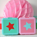 Small Star Print lunch boxes