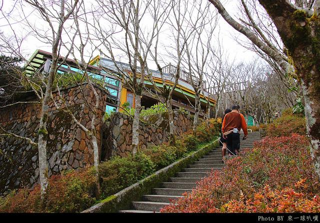 太平山-雲海咖啡館11
