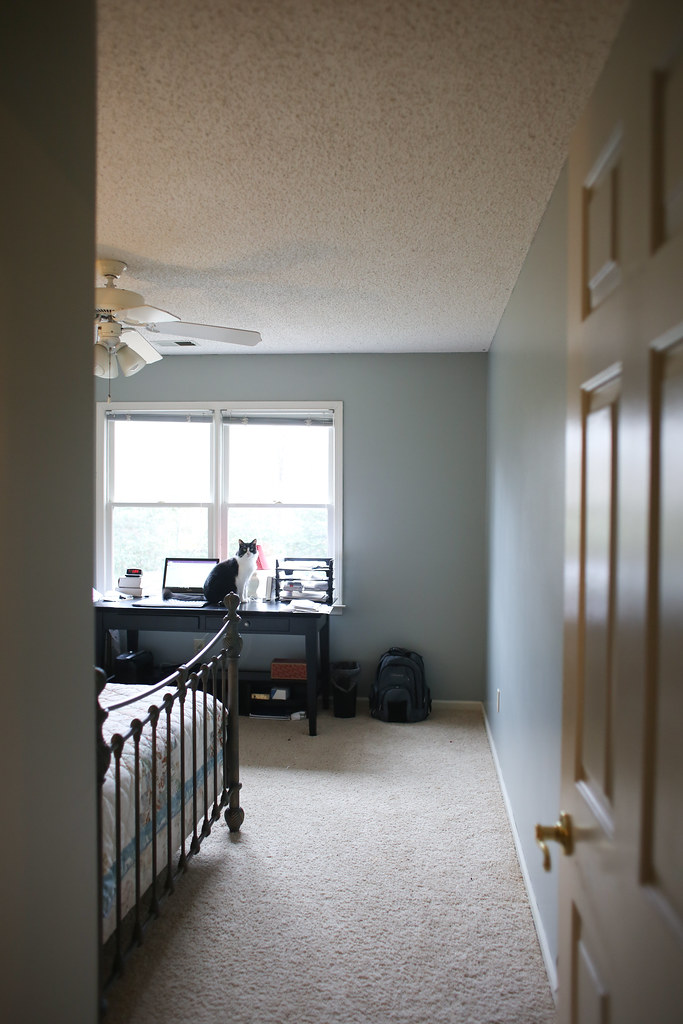 Redoing our guestroom/office with the paint Dusty Miller by Glidden