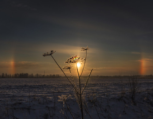 winter light sunset sky sun snow dogs nature field silhouette backlight clouds rural suomi finland landscape geotagged outdoor pillar optical halo rays snowfield wildflower magical atmospheric maisema sunray sunpillar phenomena sundogs pori milamai maijuleenatommila